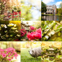 Collage Clingendael